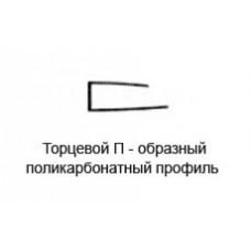 Торцевой П прозрачный, 6 мм