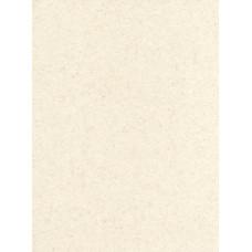Лист акриловий CORIAN® AB ABALONE (12х760х3658mm)