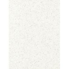 Лист акриловий CORIAN® EV EVEREST (12х760х3658mm)